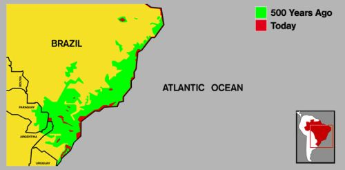 Atlantic Rainforest   Map Sr